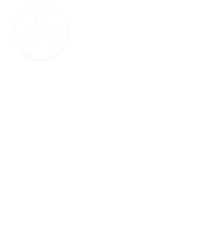 FUJI ELECTRIC WIRE